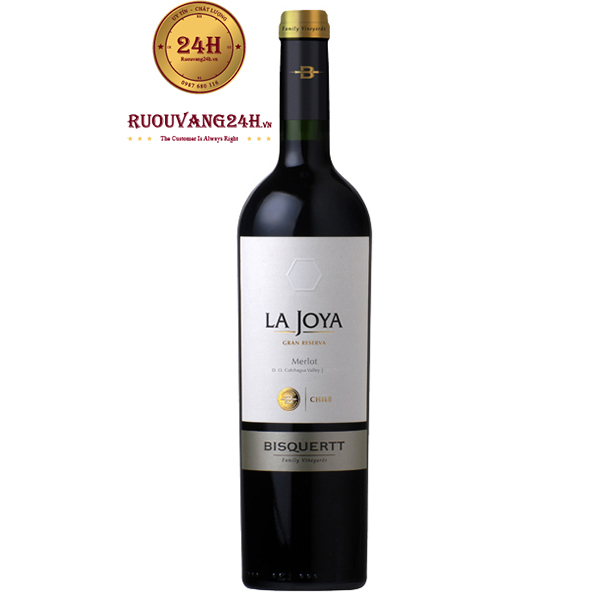 Rượu Vang Bisquertt La Joya Gran Reserva Merlot