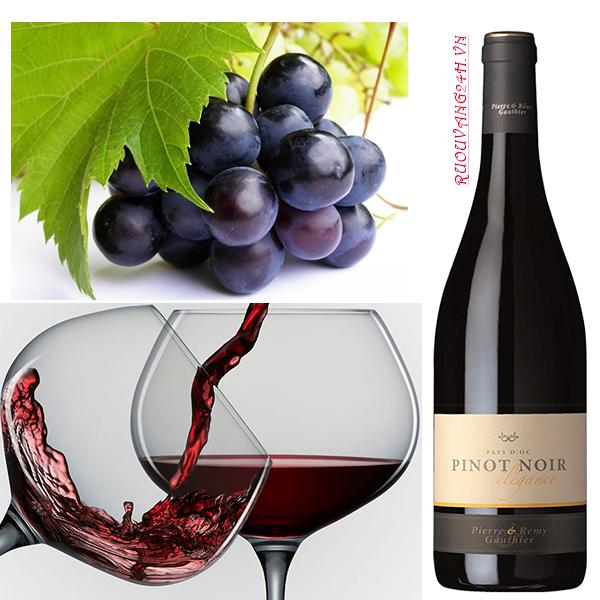 Rượu vang Pháp Pierre & Remy Gauthier Pinot Noir