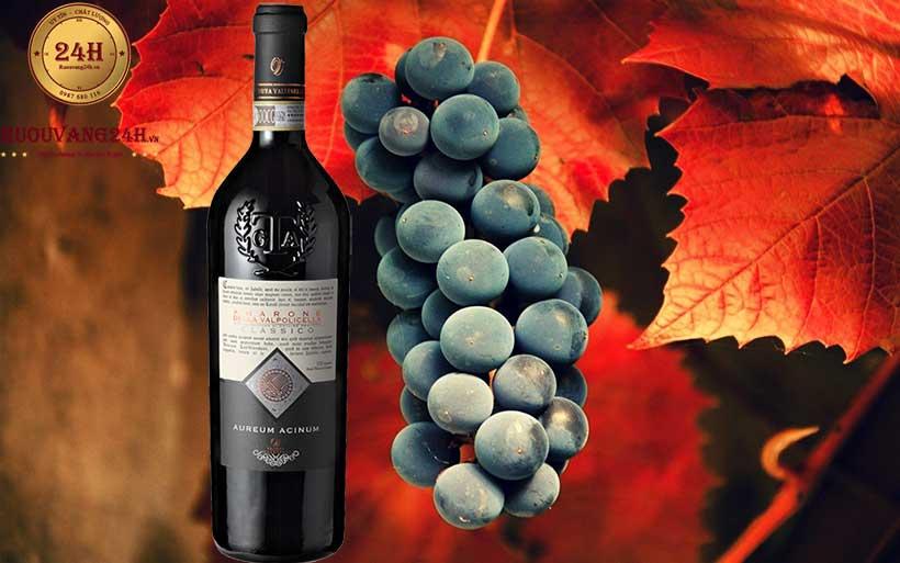 Rượu Vang Aureum Acinum Amarone Della Valpolicella Classico