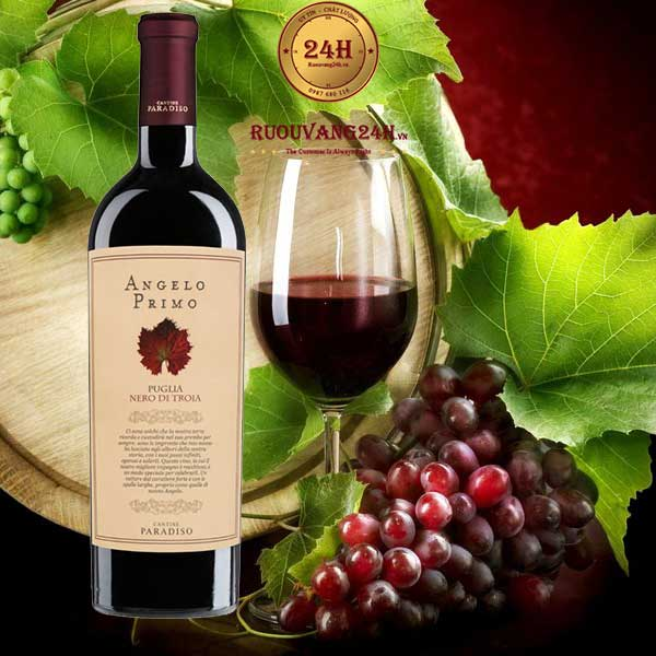 Rượu Vang Angelo Primo Puglia Nero Di Troia