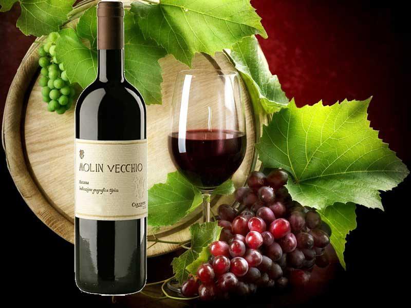 Rượu Vang Carpineto Molin Vecchio Appodiato Di Montepulciano