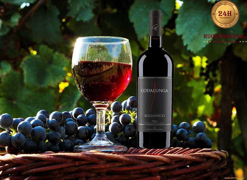 Rượu Vang Condalunga