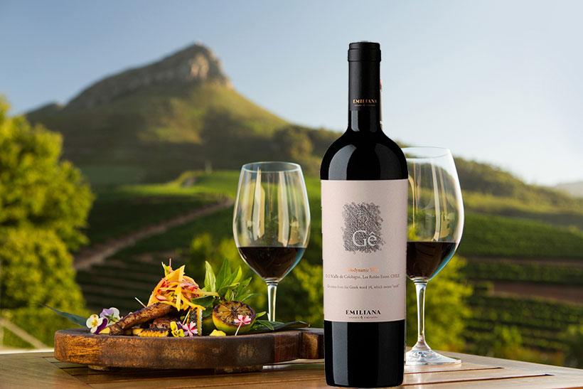 Rượu Vang Gê Ensamblaje