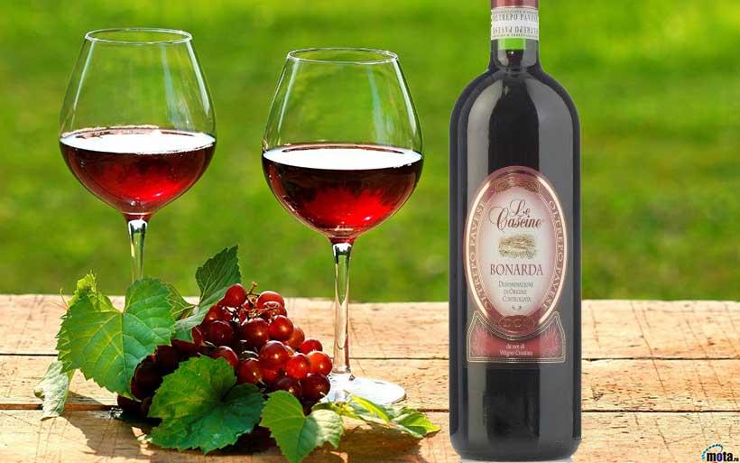 Rượu Vang Bonarda Le Cascine Cabernet Sauvignon