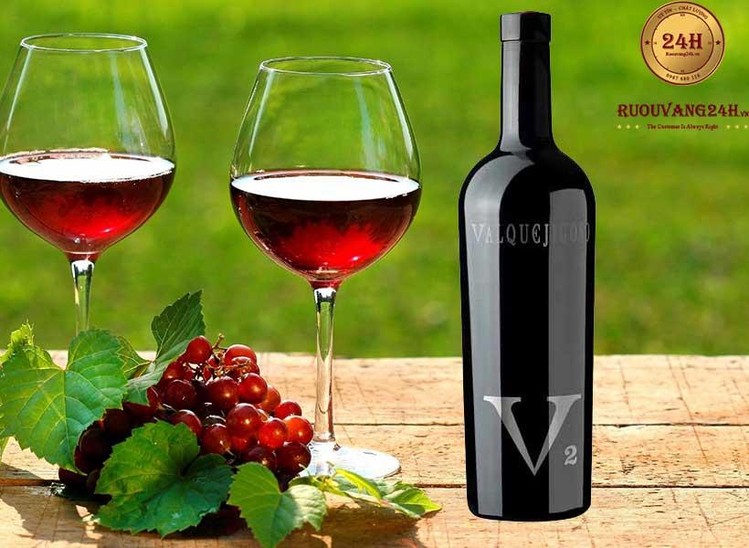 Rượu Vang V2 Valpuejigoso