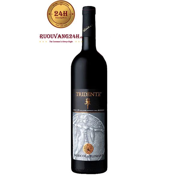 Rượu vang Tridente Salento Rosso Cantine di Marco
