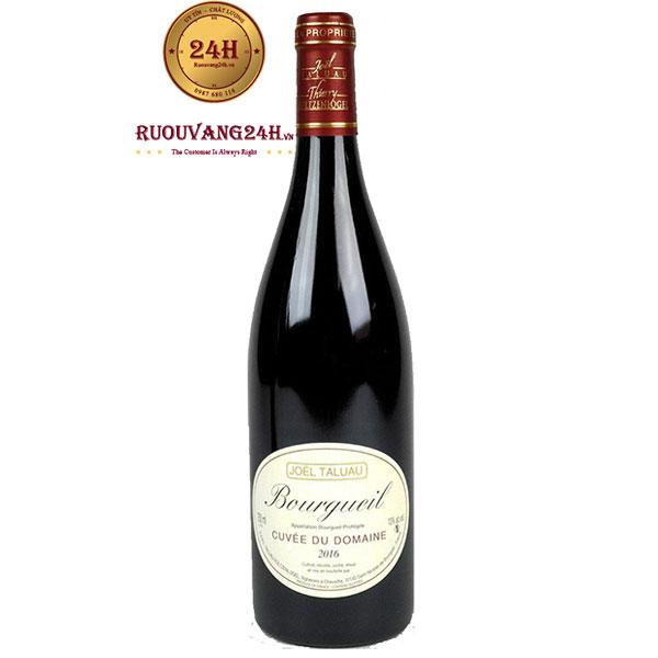 Rượu Vang Domaine Joel Taluau Bourgueil