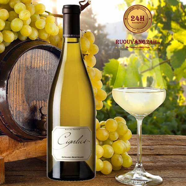 Rượu Vang Gerard Bertrand Cigalus white Aude Hauterive IGP