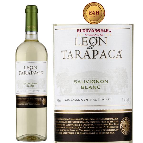 Rượu Vang Leon de Tarapaca Sauvignon Blanc