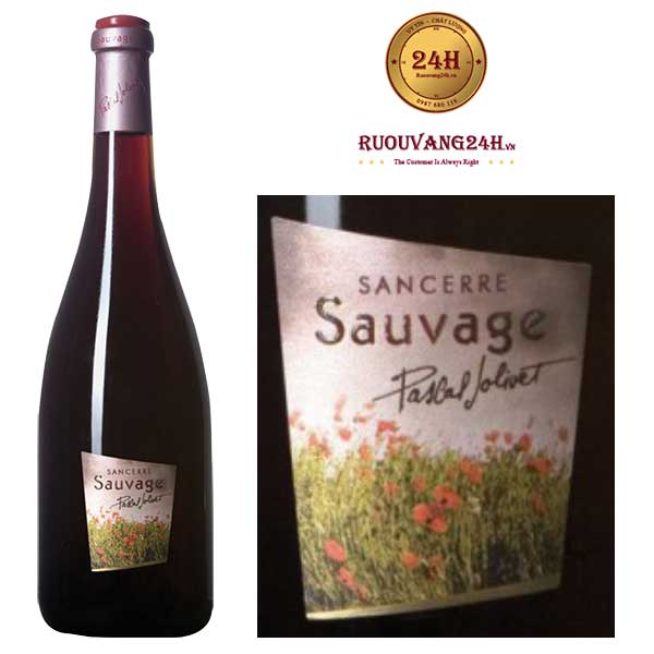 Rượu Vang Pascal Jolivet Sauvage Sancerre