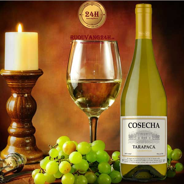 Rượu Vang Chile Cosecha Chardonnay