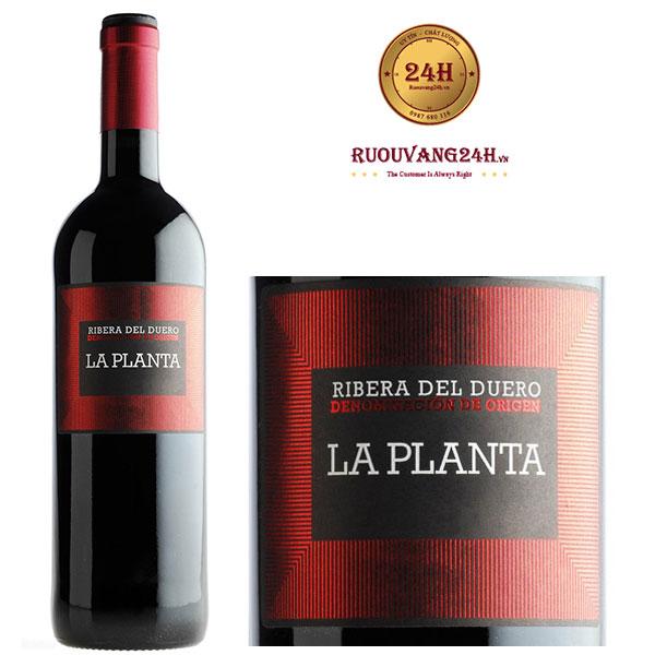 Rượu vang Arzuaga La Planta Ribeira del Duero