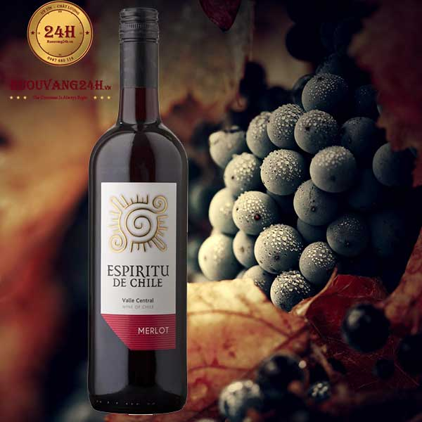 Rượu vang Espiritu De Chile