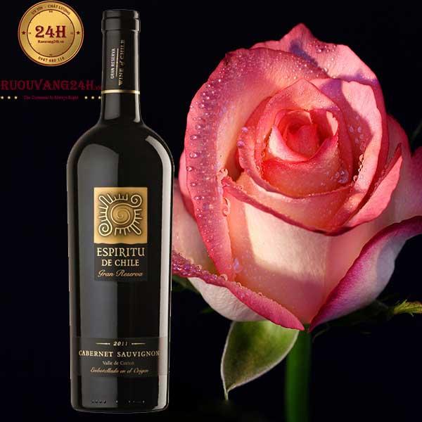 Rượu vang Espiritu De Chile Gran Reserva