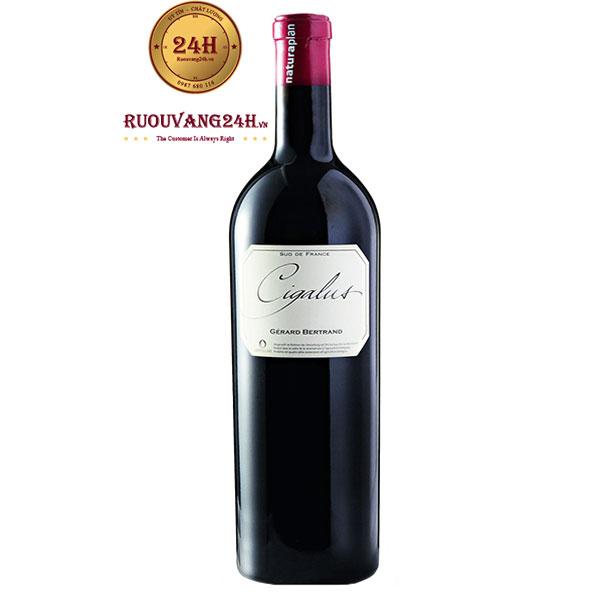 Rượu Vang Pháp Gerard Bertrand Cigalus