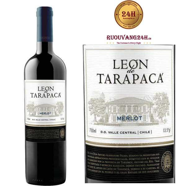 Rượu vang Leon de Tarapaca Merlot
