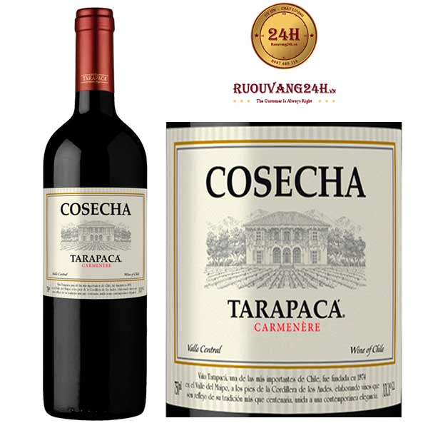 Rượu Vang Chile Tarapaca Cosecha Carmenere
