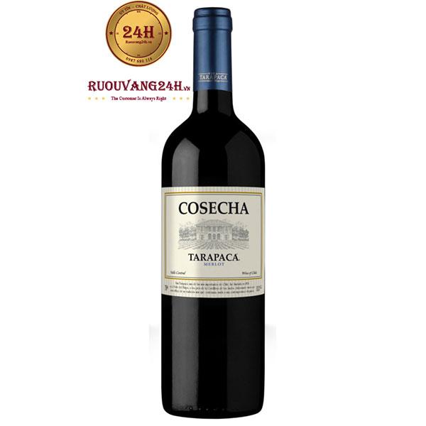 Rượu Vang Chile Tarapaca Cosecha Merlot