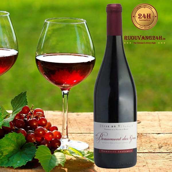 Rượu vang Vignerons Ardechois Beaumont des Gras Clairette – Marsanne