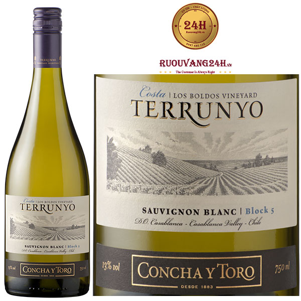 Rượu Vang Concha Y Toro Terrunyo Sauvignon Blanc Block 5
