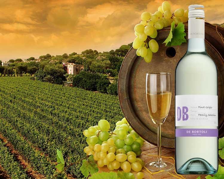Rượu Vang De Bortoli DB Selection Pinot Grigio Riverina