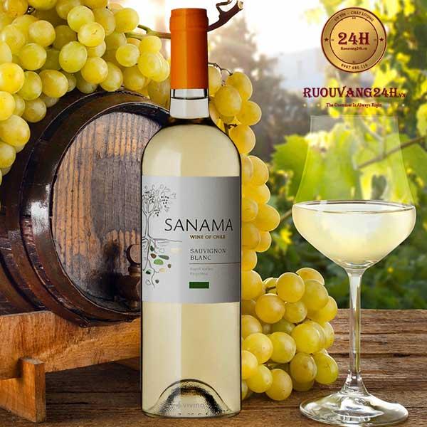 Rượu Vang Sanama Sauvignon Blanc