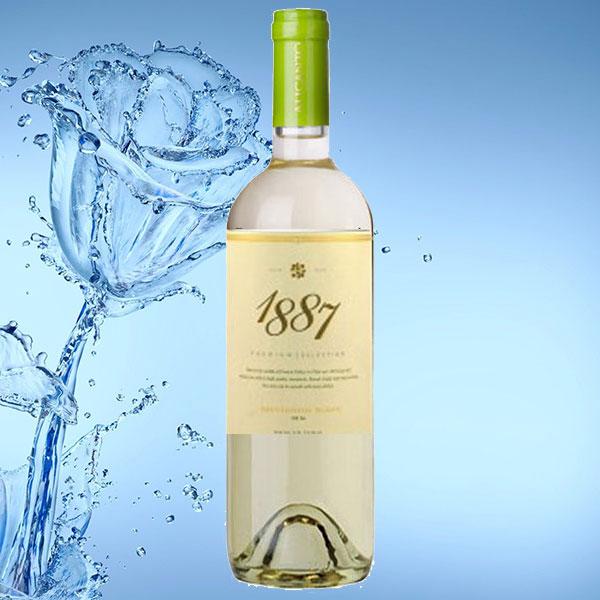 Rượu vang 1887 Sauvignon Blanc