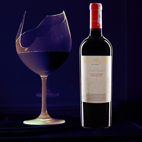 Rượu Vang Valdivieso Single La Primavera