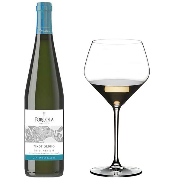 Rượu vang Forcola Pinot Grigio