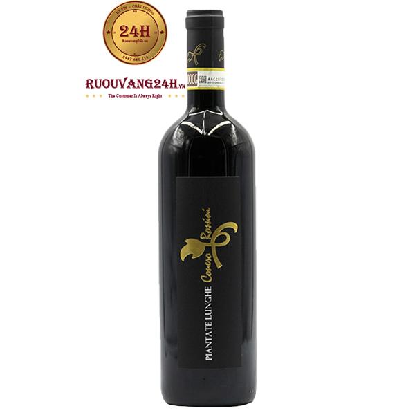Rượu Vang Piantate Lunghe Conero Riserva Rossini