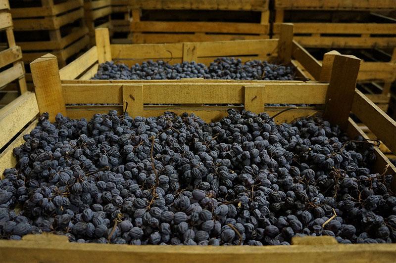 Rượu Vang Amarone Là Gì