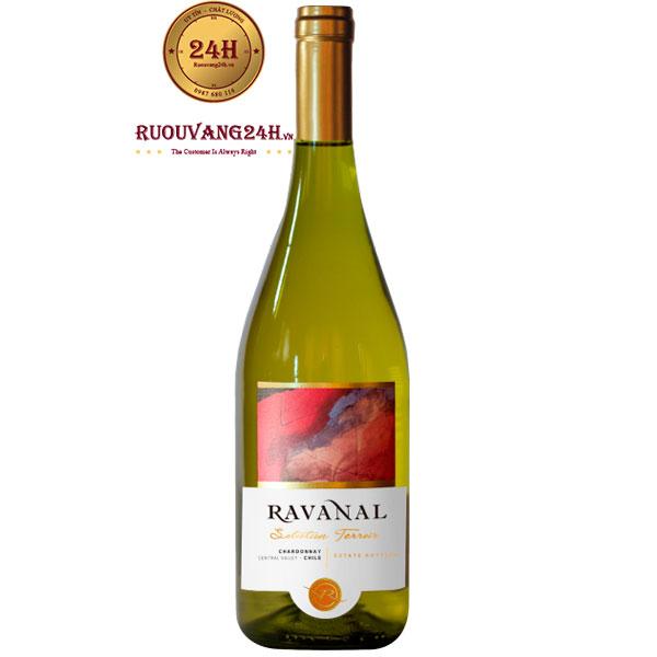 Rượu Vang Chile Ravanal Selection Chardonnay