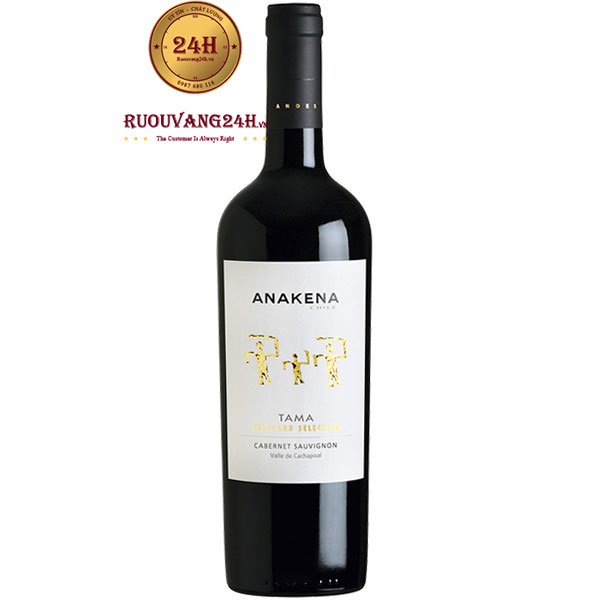 Rượu Vang Anakena Tama Vineyard Selection Cabernet Sauvignon