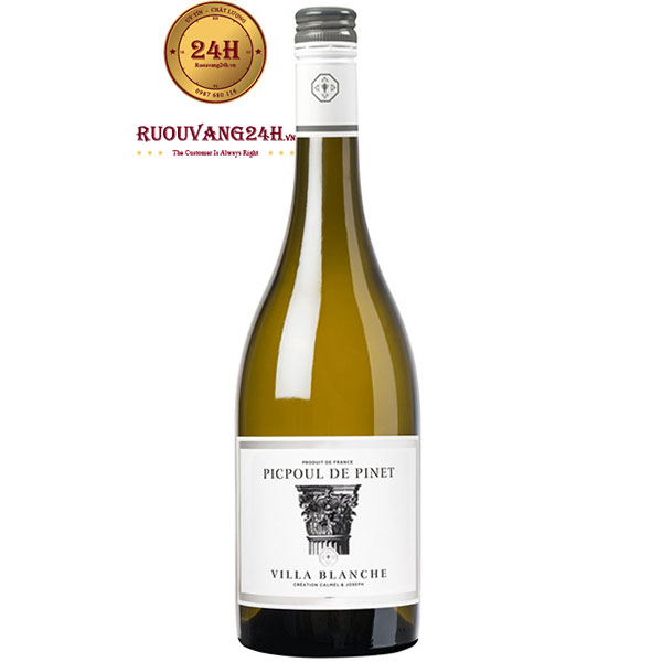Rượu Vang Villa Blanche Picpoul De Pinet